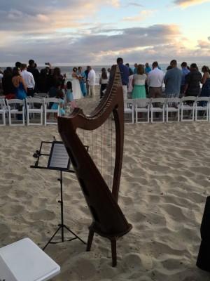 Beach Harp