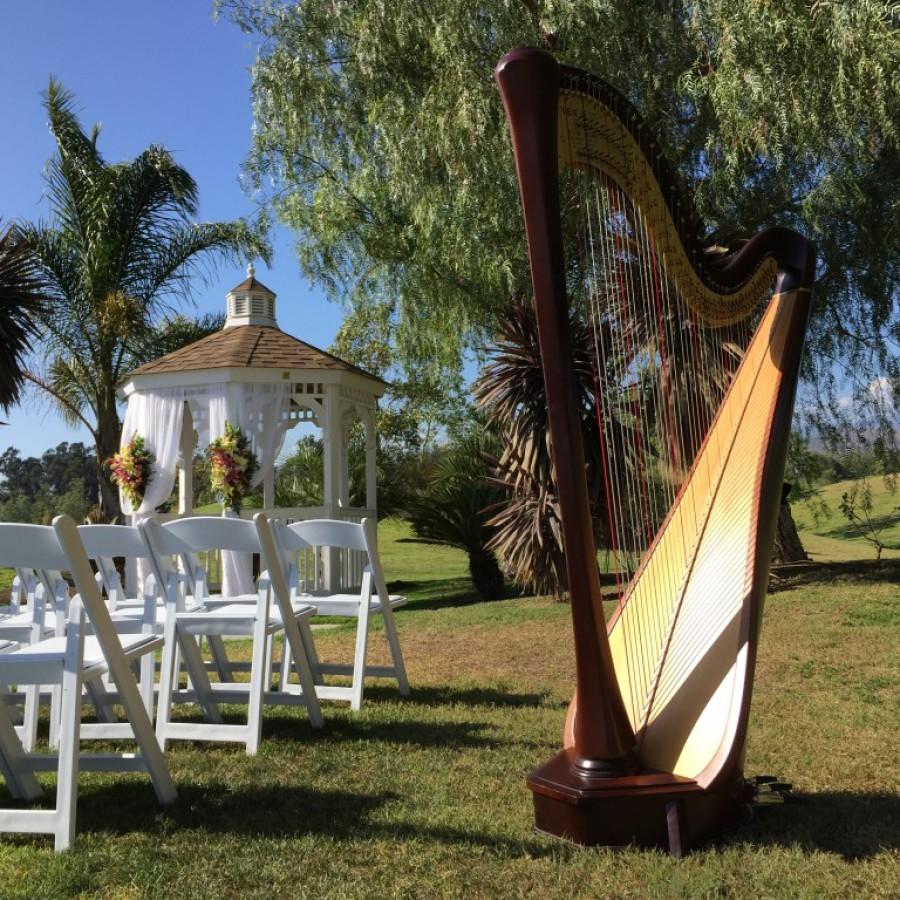 Harp Camarillo 2015-05-03 16.50.37