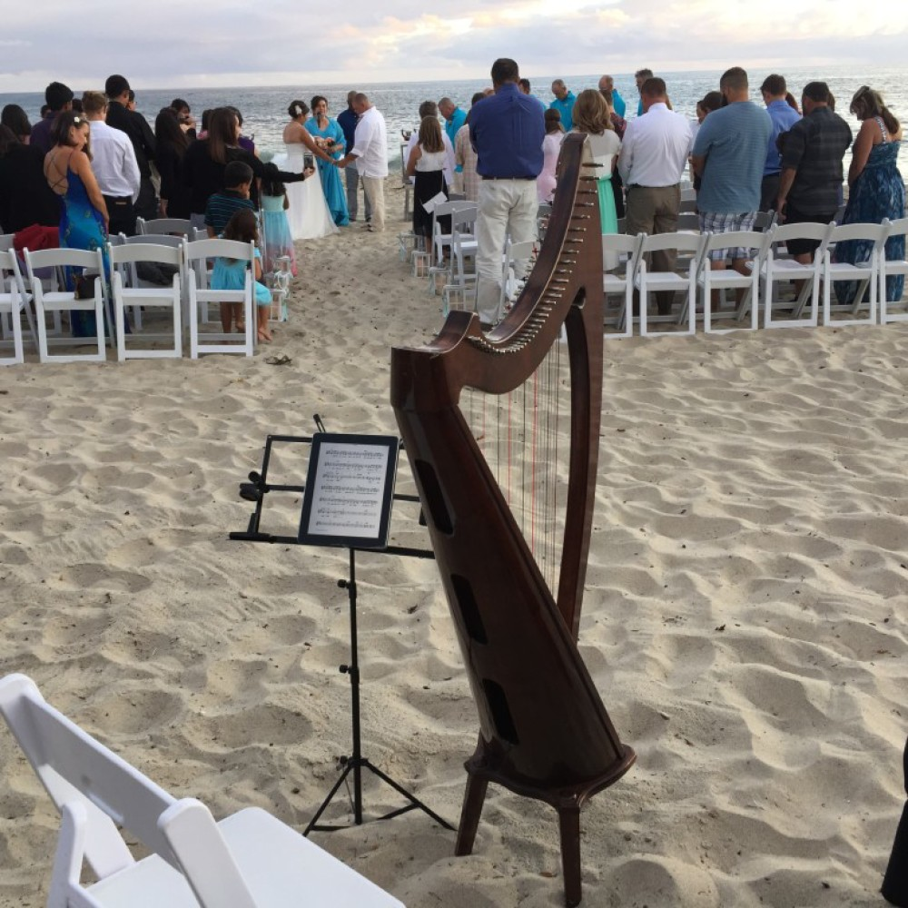 Harpist Laguna 2015-10-04 18.13.05