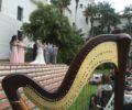 Santa Barbara Harpist