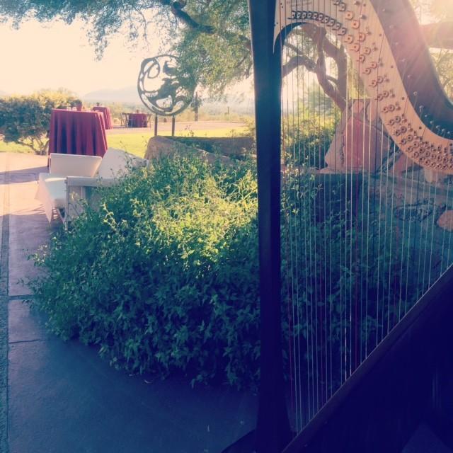 Taliesin West Harpist