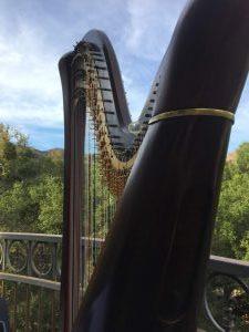 Agoura Hills Harpist